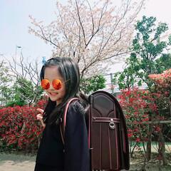 入学式/春のフォト投稿キャンペーン 東京にいる孫の入学式 🌸 ピカピカの一年…