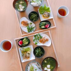 和食/豆ご飯/ズッキーニ/お願い片付けて/夫作/朝ごはん/... 朝ごはん夫作(^.^)  おすすめは黄色…