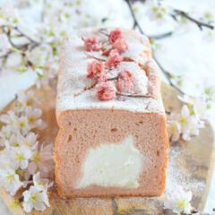 甘党大集合 生クリームをたっぷり絞り入れた桜の生シフ…