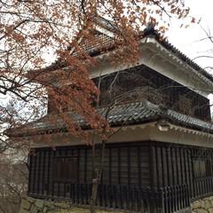上田城/城/城址/城址公園/お城/おでかけ/... * 難攻不落の上田城🏯 桜が有名らしいで…(4枚目)