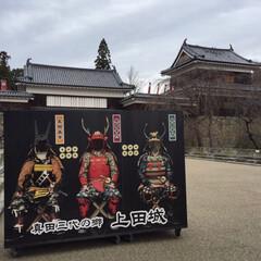 上田城/城/城址/城址公園/お城/おでかけ/... * 難攻不落の上田城🏯 桜が有名らしいで…