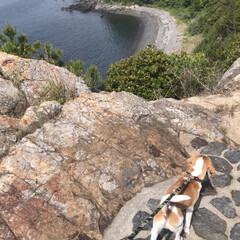 犬/犬の散歩/フォロー大歓迎/LIMIAペット同好会/わんこ同好会/風景 土曜日、 山&海を散歩✨🐕