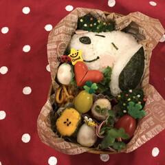 今日のお弁当/フード/お弁当/旦那さん弁当/フォロー大歓迎 今日は スヌーピーの野菜畑弁当🍱  ( …