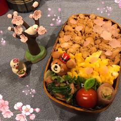 旦那さん弁当/お弁当/フォロー大歓迎 今日の旦那さん弁当は 桜🌸🌸にしてみまし…