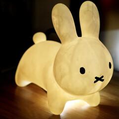 アイデス ides ブルーナボンボン ミニ ブラウン | アイデス(その他おもちゃ)を使ったクチコミ「光るミッフィーです!かわいくないですかこ…」