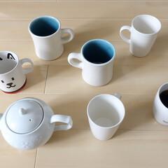 マグカップ うちの白いマグカップたち