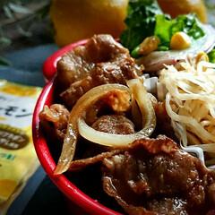 キャンドゥ/セリア/ヘルシー/お弁当箱/ボヌール弁当/ボヌール/... お肉に合う! ちこり村(@saladco…