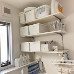 ストック収納/可動棚収納/洗面所収納/整理整頓/可動棚/洗濯機周り/...