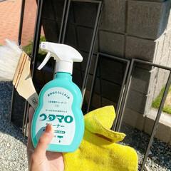スキージー/マイクロファイバータオル/刷毛/ウタマロ/窓拭き掃除/窓拭き/...