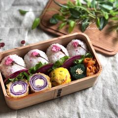 春のフォト投稿キャンペーン 桜のフリーズドライ混ぜご飯 紫キャベツの…(1枚目)