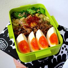 レシピ/ランチ/昼ごはん/アジア飯/アジア料理/旦那弁当/... 4色弁当。 味玉は、めんつゆの漬けておい…