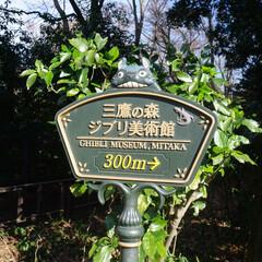 はじめてフォト投稿/ジブリ/ジブリの森美術館/ジブリ好き/東京/一眼レフ/... ジブリの世界へ ジブリの森美術館に行って…