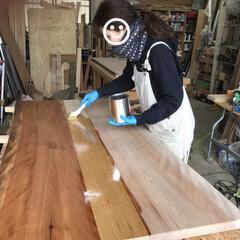 暮らしを楽しむ/家具/天板/無垢板/ダイニングテーブル/セルフリノベ/... 仕上げのオイルを塗ります。 細かい作業や…