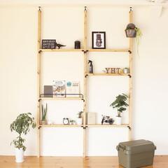 DIY/壁面収納/はしご型/収納/穴あけ不要/HANG/... 壁に穴を開けることができないお宅でも、簡…(1枚目)