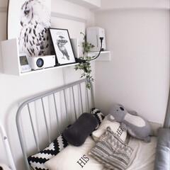 壁面収納棚/塩系インテリア/1人暮らし/プロジェクター/壁美人/DIY/... 1kで狭いながらベッドの上の壁面収納がお…