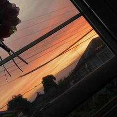 風景 今日の夕焼け📷 自分の部屋から撮りました!