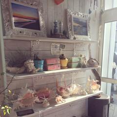 ホワイトウッド/ヒトデと貝殻/ヒトデ/写真立て/写真/シェル/... 江ノ島にある、インテリアがとっても可愛い…