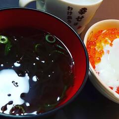 もずく/いくら/イクラ/ごはん/幸せ/幸せわたしのごはん/... もずくスープといくらごはん!自宅でこれが…