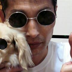 犬カフェCOCOMO/サングラス/クリン/おすすめアイテム/フォロー大歓迎/LIMIAファンクラブ/... 「(番外編)クリン🐶ォレ様兄貴だ!」Ze…(7枚目)