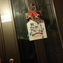 クリスマス2019/リミアの冬暮らし/ダイソー/キッチン雑貨/雑貨/住まい/... 「初めて見る!」のだワン!  ボクん家…(4枚目)