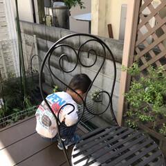 「子どもに携帯を渡して洗濯物を干していたら…」(2枚目)