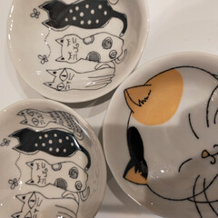 猫のいる暮らし/ダイソー 今日はダイソーでかわいい😺柄のお皿を発見…