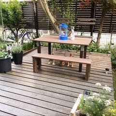 庭/DIY/ウッドデッキ/癒し/ガーデン/ガーデニング/... 数年前に自己流で作ったウッドデッキ。 な…