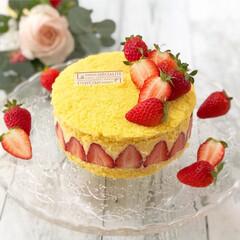 お誕生日/手作りお菓子/フレジェ/フレジエ/ケーキクラム/手作りケーキ/... 2019.4.28Sun 次男くん12歳…