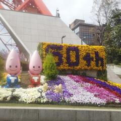 東京タワー/春のフォト投稿キャンペーン/おでかけ/平成最後の一枚