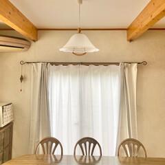 超遮光カーテン+レースセット 北欧メルク 1級遮光 | さくらインテリア(ドレープカーテン)を使ったクチコミ「ダイニングのカーテンを替えました゚+。:…」(1枚目)