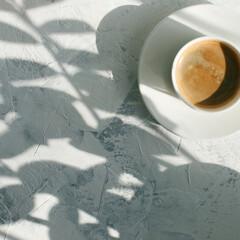 スターフィルター/時短/掃除/キッチン/汚れ/暮らし/... 夏の木漏れ日を感じながら キッチンで朝の…
