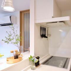 スターフィルター/レンジフード/フィルターレス/換気扇掃除/キッチン/掃除/... ご家庭のレンジフードはどんなタイプですか…