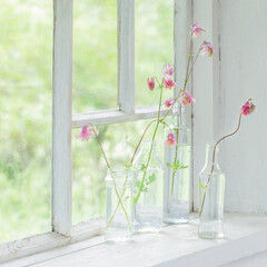 スターフィルター/キッチン/掃除/インテリア/油汚れ/換気扇 キッチンにお花を飾るだけで、 気持ちが一…