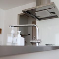 スターフィルター/油汚れ/匂い/掃除/換気扇フィルター キッチンのキレイを左右するポイントは「換…