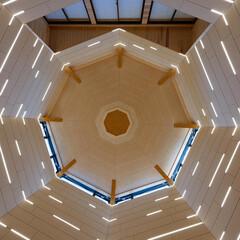 光と風/照明計画/ネコ/寺院/LED照明/建築/... 普通の住宅街に新しく建てた現代的なお寺の…