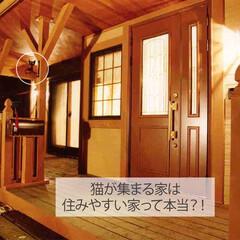 フォロー大歓迎/不動産・住宅/工務店/住まい/猫/猫と暮らす/... こんにちは!長野県の工務店「エルハウス」…