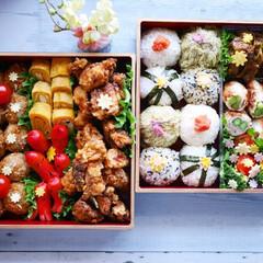 わたしのごはん/お花見/お花見弁当/お弁当/お重箱/お重箱弁当/... お花見🌸お弁当🍙