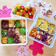 キッシュ/おはぎ/ピクニック弁当/ピクニック/ナチュラルキッチン/お花見弁当/... 家族でピクニックに行った時のお弁当です🎵
