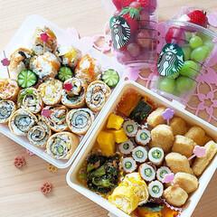 お花見/お出かけ/スタバカップ/くるくるいなり/ピクニック弁当/ピクニック/... お花見弁当を持ってお出かけしました🌸