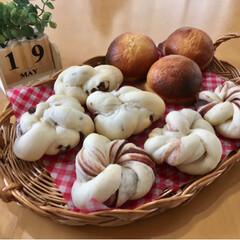 お家パン/焼き立てパン/手作りパン/フォロー大歓迎/至福のひととき/LIMIAスイーツ愛好会/...  あんぱん チョコパン スイートブール(1枚目)
