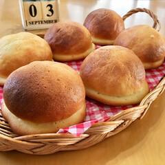 焼き立てパン/手作りパン/節約/LIMIAスイーツ愛好会/LIMIAごはんクラブ/おうちごはんクラブ/...   本日のパン!!  子供達が大好きな …