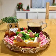 朝ゴパン/朝ごはん/お家カフェ/セリア/暮らし/フォロー大歓迎  ピザトーストで朝ご飯😋 に志かわの食パ…