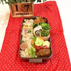 幼稚園弁当/お弁当 三女の幼稚園弁当‼︎ 炒飯とハンバーグ!