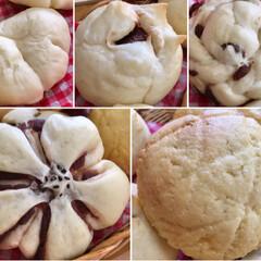 焼き立てパン/手作りパン/パン/フォロー大歓迎/LIMIAスイーツ愛好会/LIMIAごはんクラブ/...  今日は甘いパンを5種焼きました😊  メ…(2枚目)