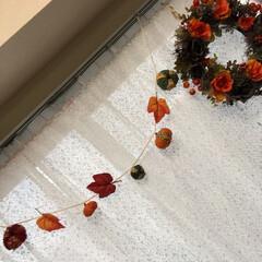 ハロウィン/リース/かぼちゃ/朱色/キャンドゥ/ダイソー/... 手作りかぼちゃの小さな物をガーランドにし…