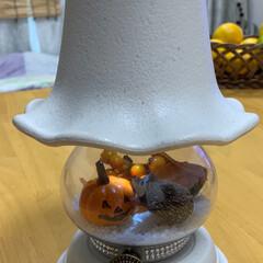 ハリネズミ/ハロウィン/ランプ/キャンドゥ/ダイソー/セリア/... 植木鉢と花瓶で作ったランプにも、ハリネズ…