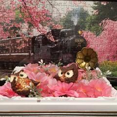 ふくろう/桜/ジグソーパズル/キャンドゥ/ダイソー/セリア/... 今、玄関はこんな感じで桜の花を堪能するふ…