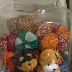 犬/ペット/チワプー/手縫い/かぼちゃ/雑貨/... かぼちゃの瓶詰め🎃  今年もかぼちゃ🎃作…