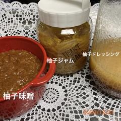 柚子ドレッシング/柚子味噌/柚子ジャム/柚子 実家の柚子で、柚子味噌、柚子ジャム、柚子…