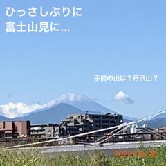 ヨーキー/チワプー/ペット/富士山/散歩/犬 頑張って2匹と歩いて来ました😂 あたちあ…